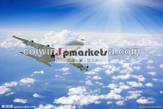 空気フォワーダ中国でfreigt-- ニッキ-- 中国からカルカッタまで問屋・仕入れ・卸・卸売り