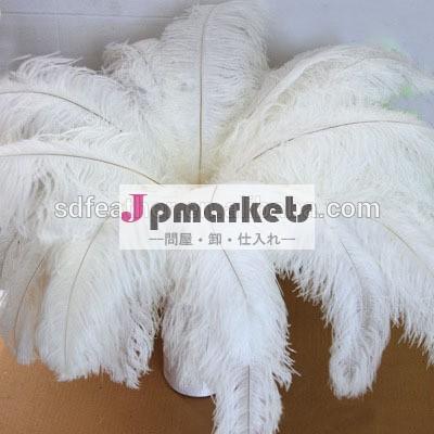 自然な人工の十分な在庫55-60cm白いダチョウの羽問屋・仕入れ・卸・卸売り