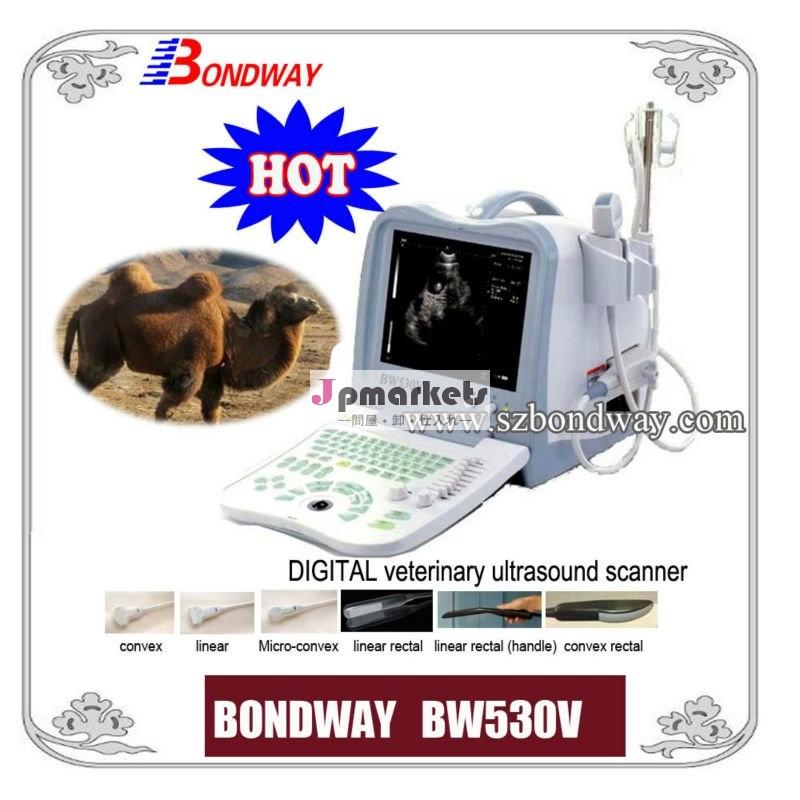 デジタル獣医超音波スキャナ( bw530v)- 獣医超音波イメージングのためのウマ、 豚、 ウシ、 羊、 ヤギの、 ペット、 usbポート問屋・仕入れ・卸・卸売り