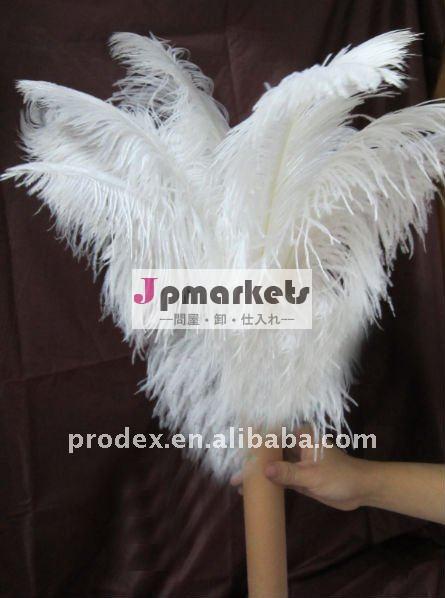 だちょうは羽をつけ、羽と、踊る羽の服、decroationの羽結婚する問屋・仕入れ・卸・卸売り