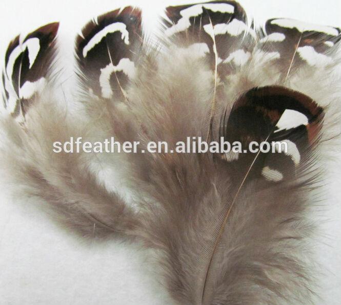 安い茶色リーブスキジキジの羽の販売のための羽-フェザー問屋・仕入れ・卸・卸売り